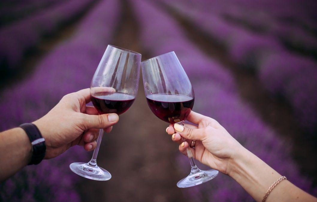 La Provence une terre agricole et viticole impactée par la vague de gel